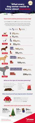 What Can Dogs Eat Chart How Much Chocolate Is Poisonous To Dogs Vets Now