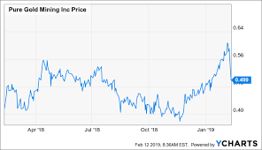 Pure Gold Minings Share Price Falls As The Feasibility
