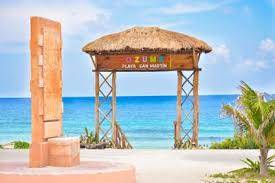 Image result for Visit Playa San de Martin cozumel