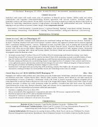 Fraud Analyst Sample Resume