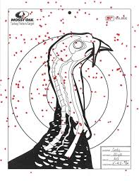 Shotgun Spread Pattern Chart Turkey Hunting With A 410 Shotguns Loads Chokes What