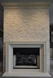 CAST STONE FIREPLACE MANTELS contemporary-family-room