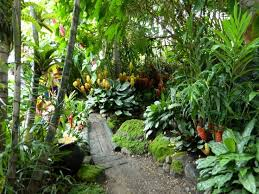Small Picture Unique Tropical Landscape Plants 8 Garden Design With 8 Tropical