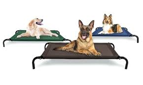 steel frame cot style raised pet bed dog with canopy outdoor