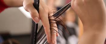 Hairstylist In 40 Weken Avondopleiding Nederlandse Kappersakademie