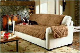 full size of inch sofa sleeper wide cushion protector too small long narrow depth table living