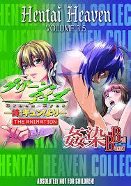 Anime dvd hentai manga domestic shiping