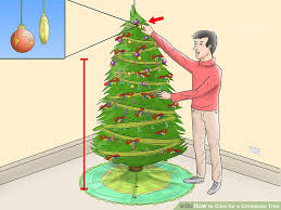 Best 25 Real Christmas Tree Ideas On Pinterest  DIY Pine What Day Do You Take Your Christmas Tree Down On