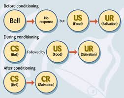 Example Of Classical Conditioning Classical Conditioning Examples Google Search Psych Pinterest