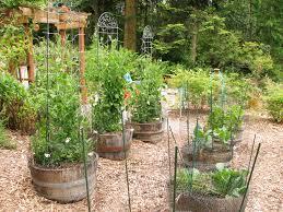 Kitchen Garden Blog Garden Tour Crows Canning Backyardnotes
