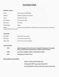 Functional Resume Formats Basic Resume Format Template Functional
