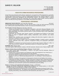 Free Download 60 Resume Template Microsoft Word 2007 Format