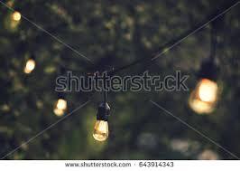 How To Hang Christmas Lights  DIYChristmas Lights In Backyard