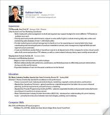 Professional Resume Format Examples Awesome Excellent Professional Resume Photo In Professional Resume Format