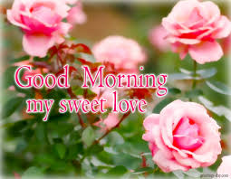 Good Morning My Sweet Love Quotes Best Of Good Morning My Sweet Love Quotes My Sweet LoveGood Morning