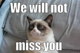 wont miss you we will not miss you grumpy cat