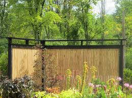 Traditional Patio Privacy Then Backyard In Outdoor Bamboo Privacy Fence  Ideas Together With Backyard Gardendecoration Bamboo