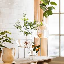 Accessories: Ikea Ladder Multi Plant Stand - Indoor Plants