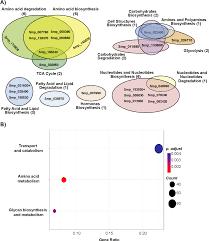 Translation Vs Transcription Venn Diagram Figure 2 From The Anti Fecundity Effect Of 5 Azacytidine 5