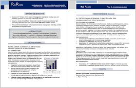 Professional Executive Resume Samples 92978 Professional Modern