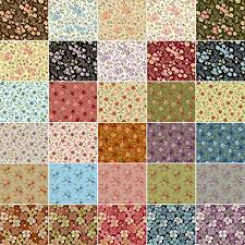 Amazon.com: Petals 30 Fat Quarters Fabric Bundle Quilting Treasures &  Adamdwight.com