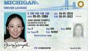 Complies Law Officially Id With Real Michigan