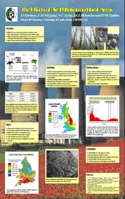 Presentation on pollution