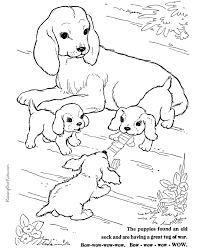 Small Picture page of a cute dog