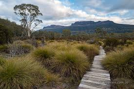 a night at narcissus hut lake st clair luke o brien photography overland track mt olympus