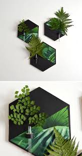 these black and tropical hexagonal wall vases put small flowers or leaves on display and