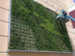 Small Picture The Ultimate Guide To Living Green Walls Ambius