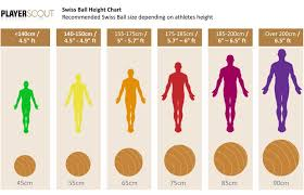 Body Ball Size Chart Stability Ball Sizes Yoga For Balance Yoga Fitness