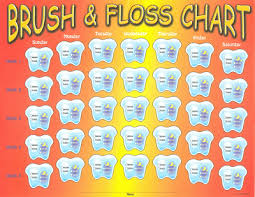 56 Genuine Childrens Dental Chart