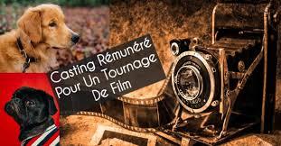 Casting Tournage Film Chien Loup pour dressage film
