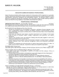 Agile Business Analyst Resumes Business Analyst Cv Template Business Analyst Resume Template