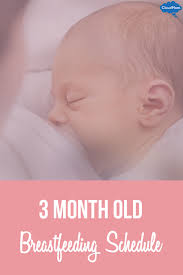 3 Months Baby Food Chart 3 Month Old Breastfeeding Schedule Cloudmom