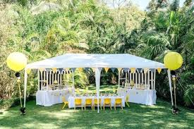 ble bee birthday party tent ideas outdoor sweetly feature