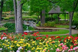 roses are red and pink and yellow and white at the tyler munil rose garden
