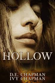 Hollow: A Diary of Loss by D.E. Chapman