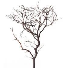 Natural Red Manzanita, 12 inch : Blooms and Branches - Decorative branches  and manzanita!