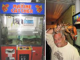 Odd Vending Machines Fascinating 48 Weird Vending Machines The List Cafe