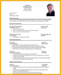 Cv For Job Application Sample Resume Template Example Of Curriculum