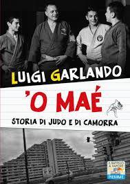 La sfida di Maddaloni a Scampia in una storia per ragazzi di judo e camorra  - Il Mattino.it