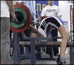 Image result for huge bench arch