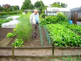 container vegetable garden plan gardening pdf patio ideas container vegetable garden