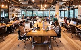 shared office layout. The Shared Office Space Layout: Different Kinds, Pros And Cons Layout A