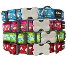 Patterned Dog Collars Gorgeous Buy Nylon Dog Collar With Dazzling Stars Design UK