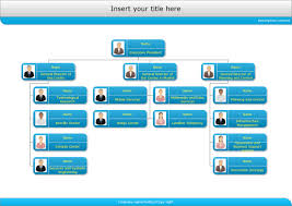 Examples Of Flowcharts Organizational Charts Network
