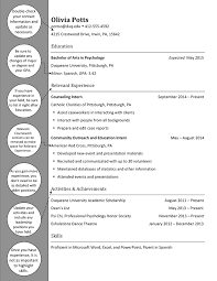 Psychology Resume Objective Prepossessing Cv Psychology Graduate