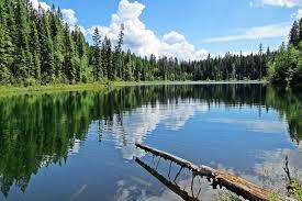 Cobb Lake Kootenay National Park Hiking Bc Hiking With